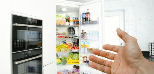 Fridge repairs for your home – you are not alone